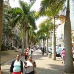 Mainstreet - Durban