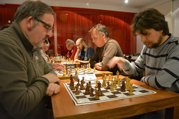 molse schaakkring