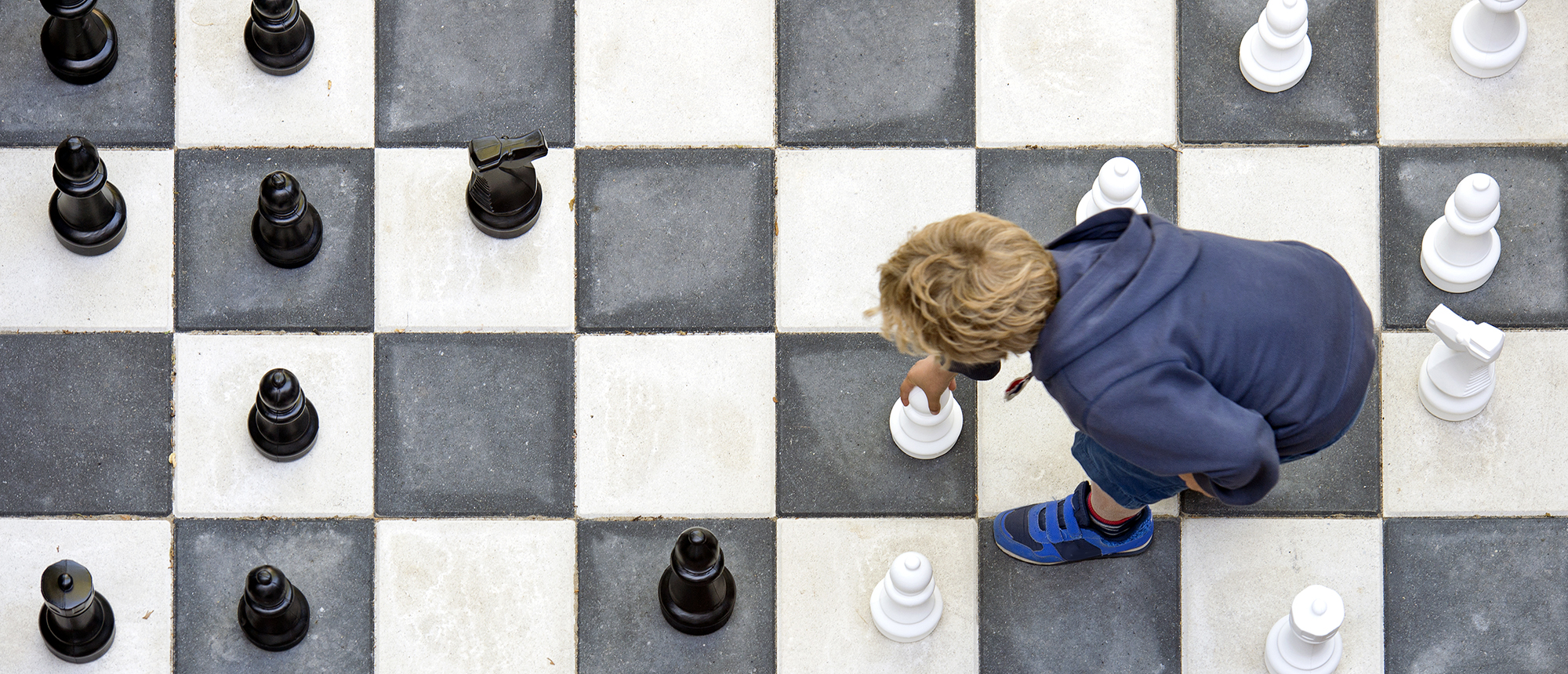 schaak-header
